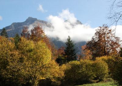 Blausee. Herbst im Park