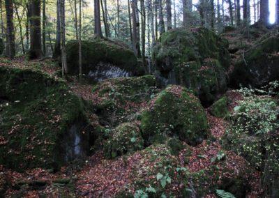 Felsturzgebiet Blausee
