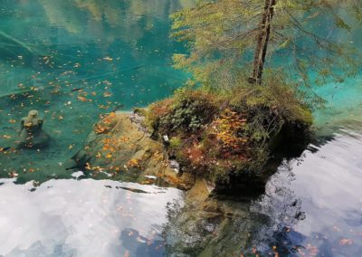 Kleine Insel am Blausee